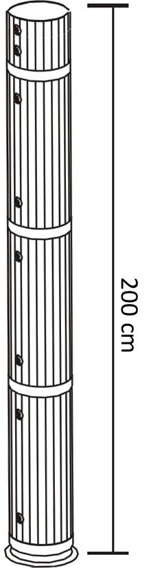 Beamer P200
